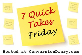 7 quick takes 7 Quick Takes Friday (vol. 46)