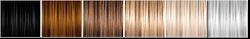 Binned Colors Pallette