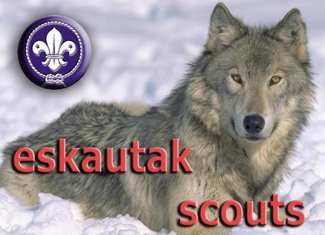Scouts y Guías de Gipuzkoa; eskautak