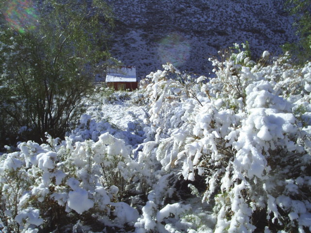 La nieve purifica estas tierras Magicas