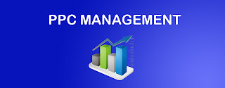 Reasons You Need to Opt for a PPC Management Company