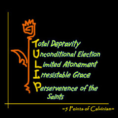 http://2.bp.blogspot.com/_EpJrwoCGoio/SrDeCvj9hxI/AAAAAAAAApY/jGdi2TkHC8s/S240/5_Points_of_Calvinism___TULIP_by_jlel.jpg