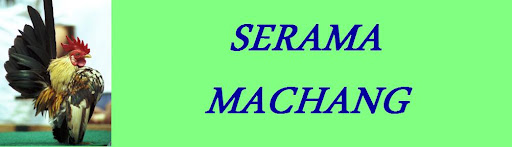 Serama Machang