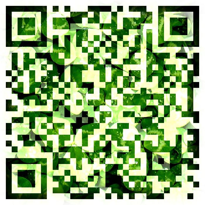 http://2.bp.blogspot.com/_EtWpnuFRcjk/TD_l-hS2WYI/AAAAAAAAC7o/64KStiUpHns/s1600/QRCodeColoredTextured.jpg