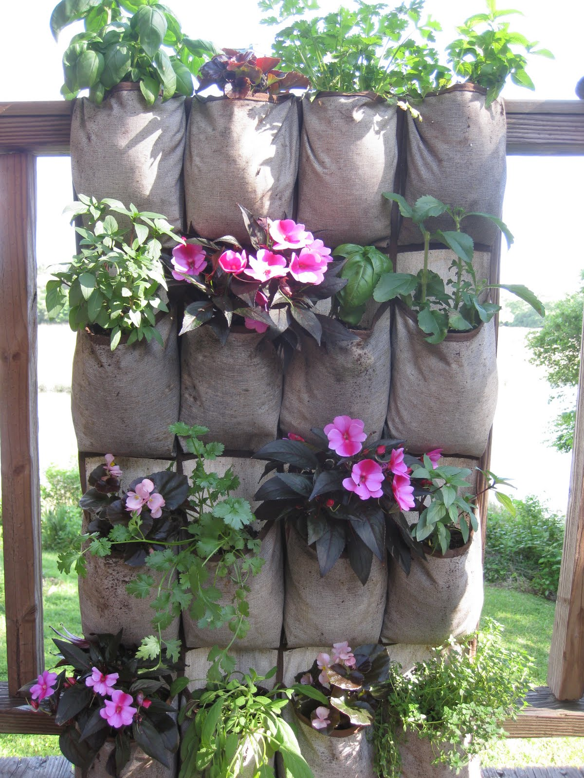 Offshoots vertical gardening on the cheap - Maceteros de pared ...