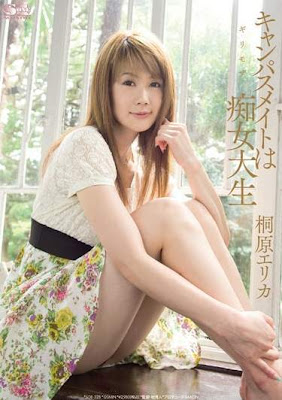 AV No.1 2009年度新人賞------票選結果公布