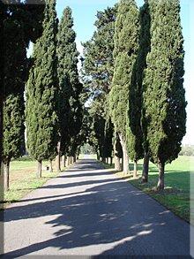 Camino de San Calisto a 'Quo Vadis'