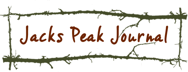 Jacks Peak Journal by Patrice Vecchione