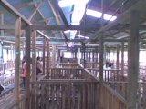 Di Al-Barakah Masa Kursus 10 & 11/05/2008