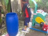 Pembuatan Silaj Napier & Batang Jagung..