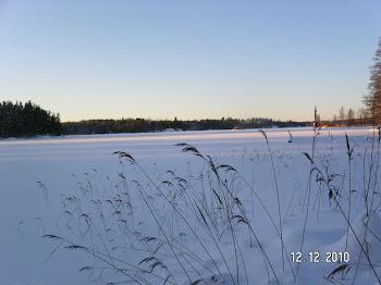 Sjön i Björnhult