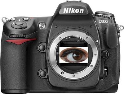Nikon D300 CMOS sensor
