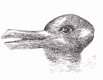 Rabbit or Duck illusion
