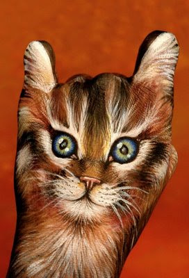 Kitty Illusion | Hand Painted Illusion
