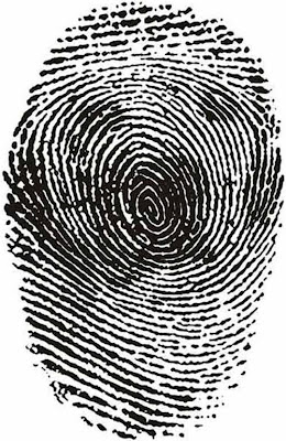 Spot The Animal in Fingerprints | Hidden Animal Illusion