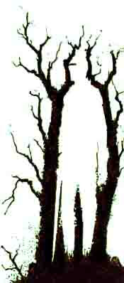Trees Hiding Man Illusion