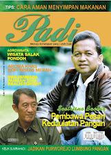 Majalah Padi Edisi 17 2008