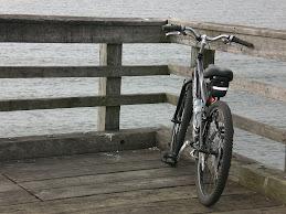 愛用の自転車です。