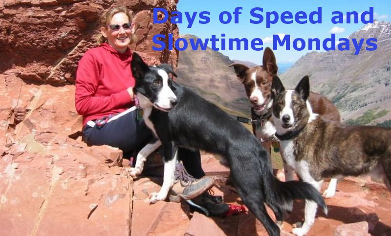Days of Speed and Slowtime Mondays