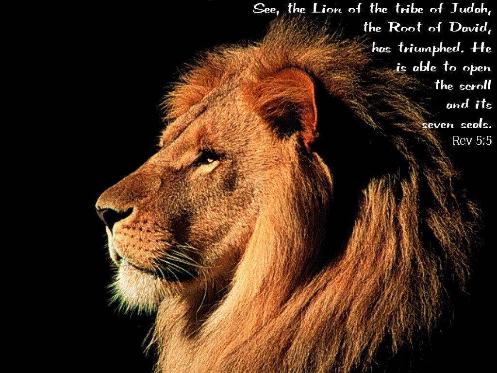 THE LION OF TRIBE JUDAH IS CHRIST HE MAY BE A LAMB BUT ALSO