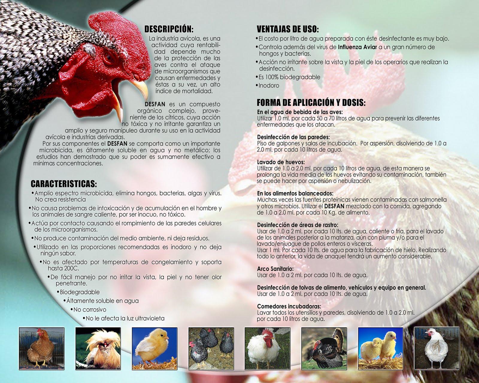 como administrar una granja avicola