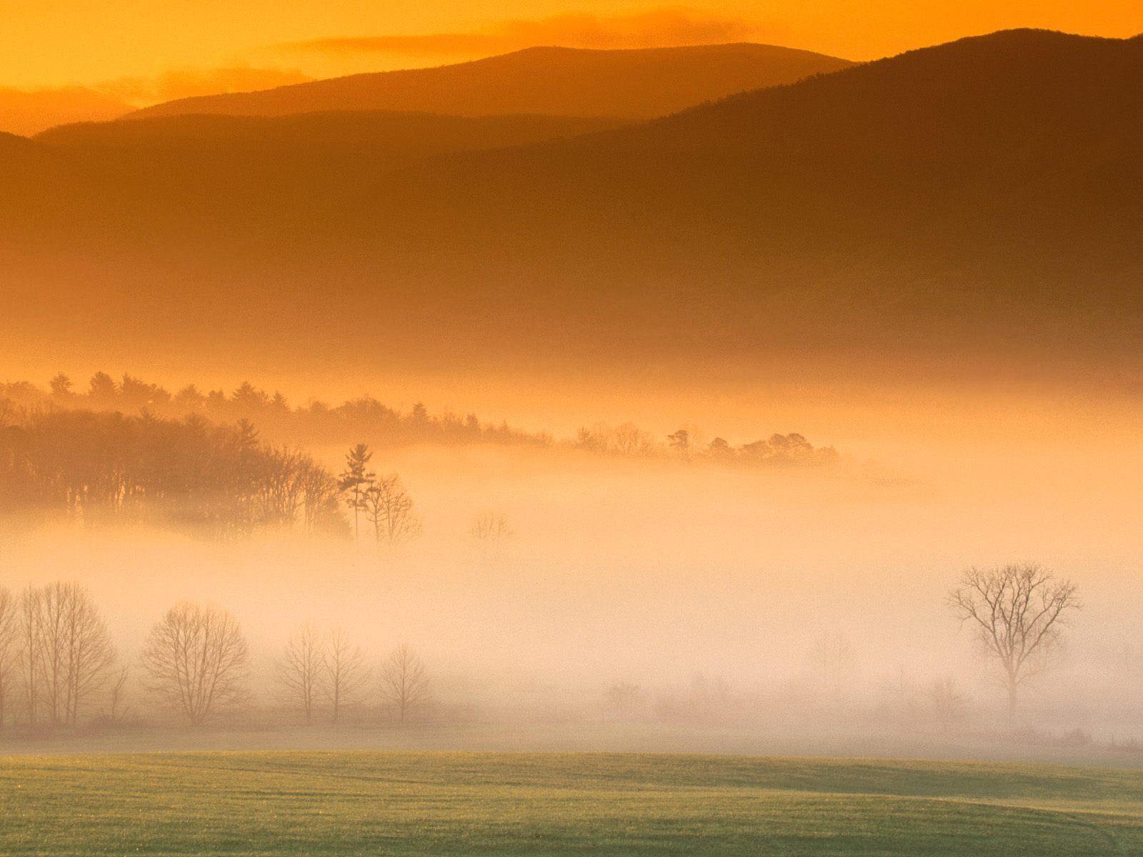 http://2.bp.blogspot.com/_F0d8rSyT-H0/TADWXagyAiI/AAAAAAAACNk/Y5MegNxsSn4/s1600/nature-wallpapers.jpg