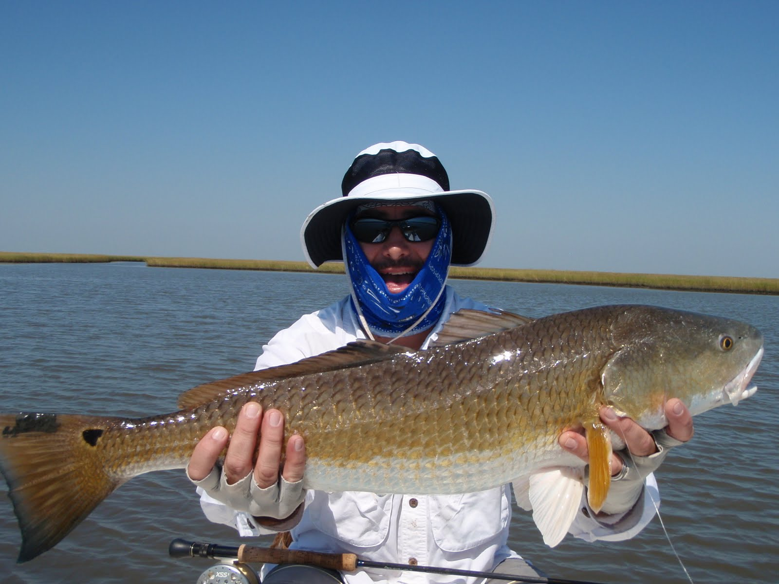 Saltwater fly fishing reports fly fishing redfish for Saltwater fly fishing