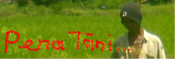 PENA TANI