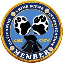 Team CCSI