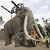 Ομοφυλόφιλος ελέφαντας έκανε άνω κάτω  τον ζωολογικό κήπο του Πόζναν στη Πολωνία