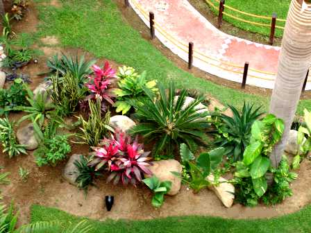 La gardenista tropical garden for Tropical garden designs