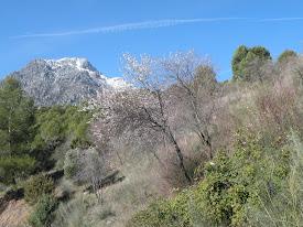 Camino de Castañeda - Quebrajano