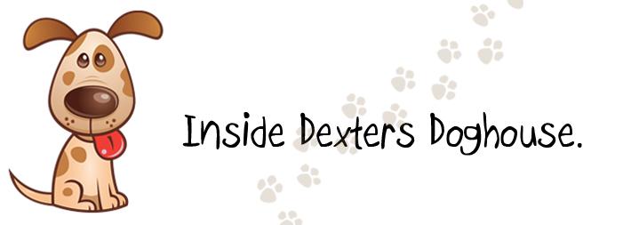 Inside Dexters Doghouse