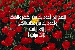 أحبك منتداي الغالي Image0099