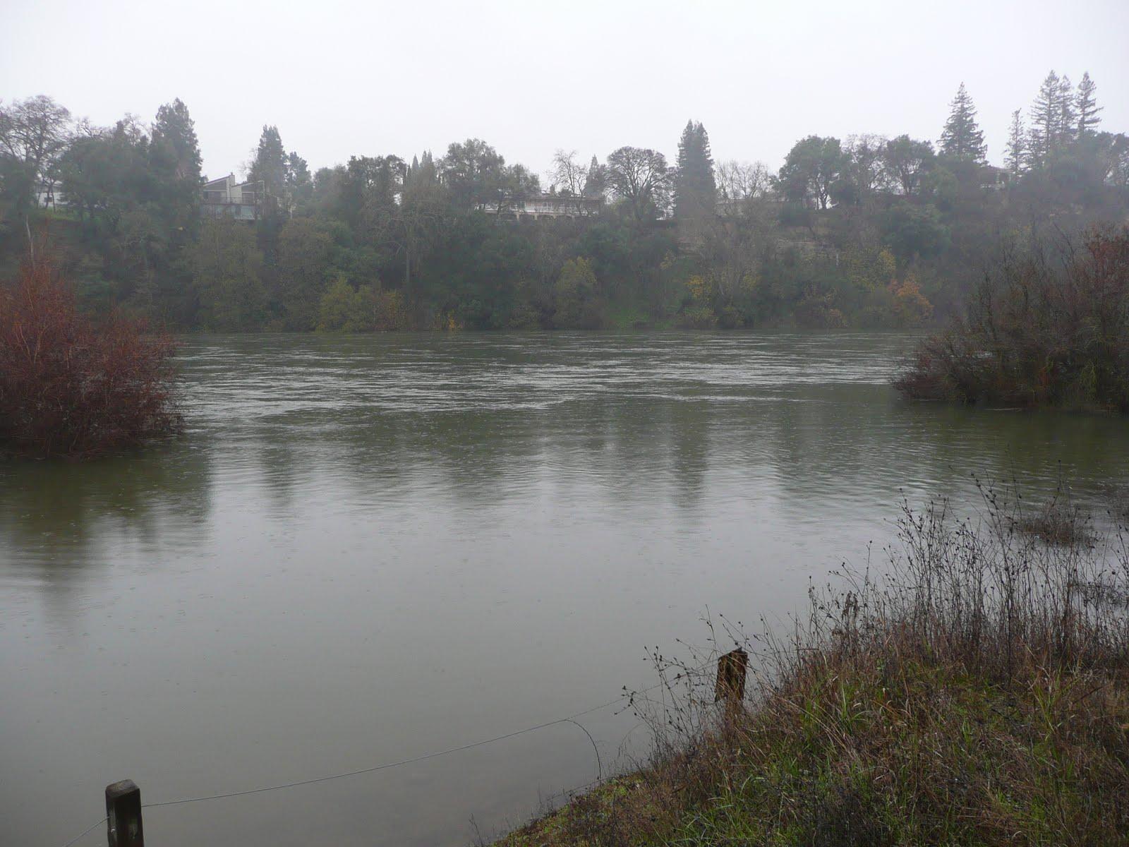 Northern california trout december 2010 for Lake natoma fishing