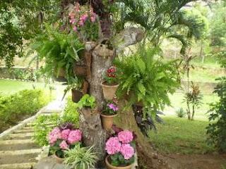 Mirian Decor: Vasos na decora??o