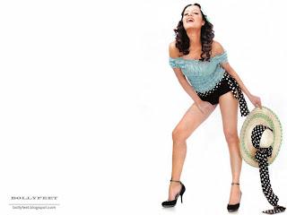 Celina Jaitley Leg show