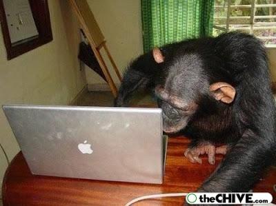 Foto Lucu Dunia Laptop