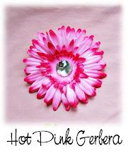 Hot Pink Gerbera