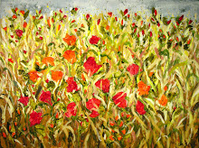 Red Flower field