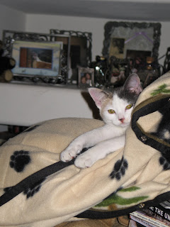 Gretel in Snuggle
