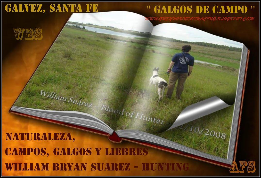 CIUDAD DE GALVEZ -  SANTA  FE - 2009
