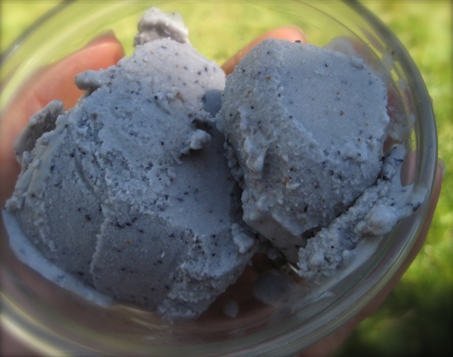 Raw Love: Blueberry Cardamom Ice Cream