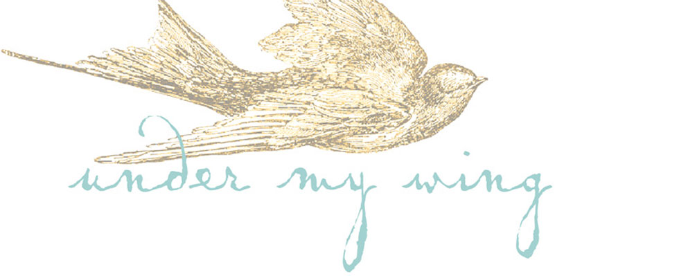 under my wing-a caregiving blog