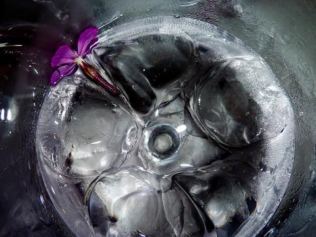 Gin Tonic de Violeta