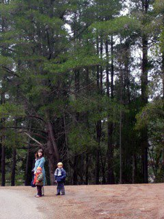 I love...  living in the forest