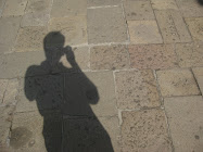 The Shadow of the consultant