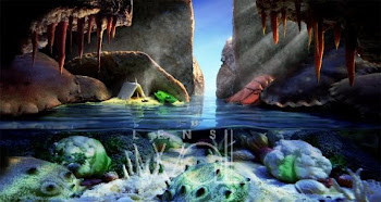 Cave - Carl Warner