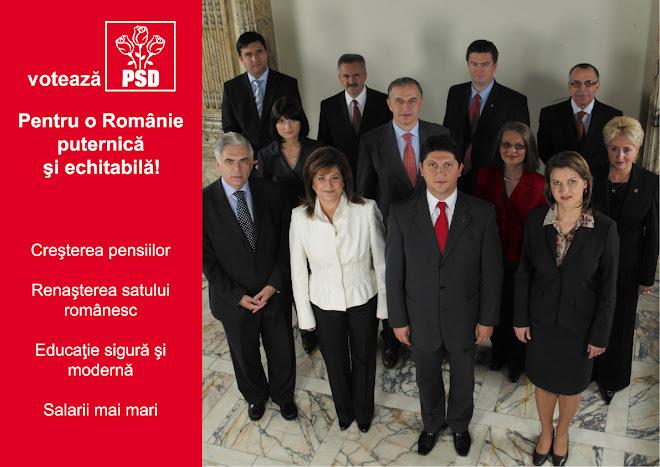 Voteaza PSD