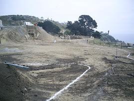 Proyecto Hipocampus resort